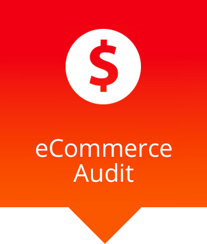 ecommerce audit with dollar sign icon