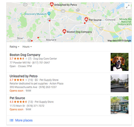 Screenshot of Google Boston Dog Company location search