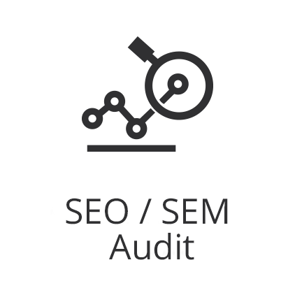 Graph with magnifying glass and text that says SEO SEM audit