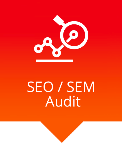 seo sem audit magnifying chart icon