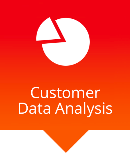customer data analysis chart icon