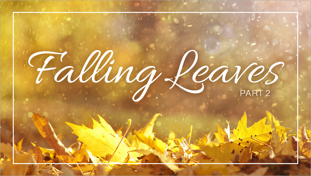 Article Image: falling-leaves-and-falling-asleep-part-2