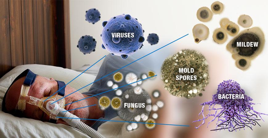 soclean-_-bacteria-graphic