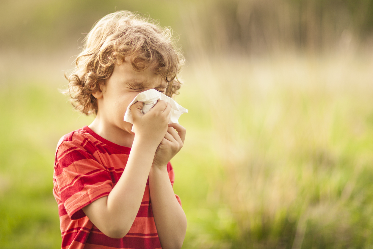 Little blond boy sneezing due to allergies, on a sunny day outdoors. He is holding a handkerchief in his hands, looking away.